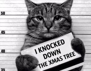 Tis the season to be … SAFE! Deck the halls with boughs of Safety
